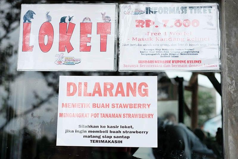 Harga Tiket Masuk Taman Kelinci Bandar Lampung