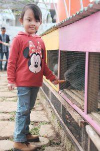 Wisata Memberi Makan Kelinci Bandar Lampung