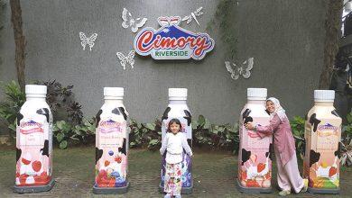 Liburan Di Cimory Riverside Puncak Bogor
