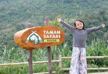 Liburan Ke Taman Safari Bogor